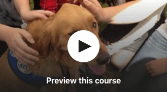 therapy dog training online course preview